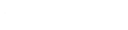 masters of aerial imaginf logo 3
